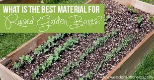best material raised garden bo
