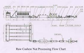 Cashew Nut Size Chart 400 Kg Raw Cashew Nut Processing Machine Supplier In China