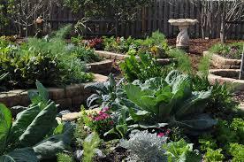Our Kitchen Garden An Edible Landscape Mounts Botanical Gardenmounts Botanical Garden