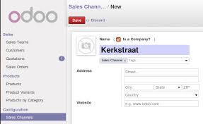 Sale Channel Odoo Apps