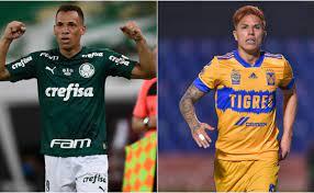 Palmeiras | Today news