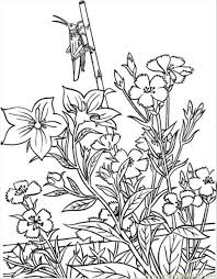Small Picture Opper In Garden Coloring Page Coloring Page Free Garden Coloring