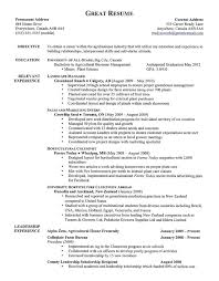 Good Looking Resumes Good Examples Of A Resume Resume Examples Great Good Cv Of Resume 34