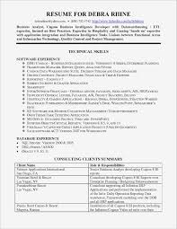 Sample Business Analyst Resume Business Analyst Roles and Responsibilities Resume Pdf format 47