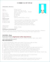 Pastry Chef Resume Examples Resume Layout Com