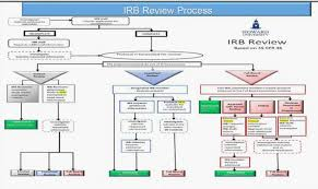 Design Review Process Flowchart The Irb Process