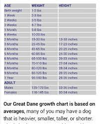 Doberman Pinscher Height And Weight Chart