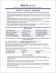 Craigslist Resume Extractor Professional Resume Templates