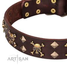 everyday leather dog collar with fashionable decorations