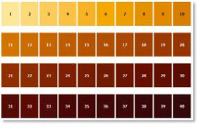 Gardner Color Scale Chart Www Gogoplex Se