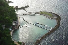 Cove Of Dolphin Jamaica Review Ocho Dive Rios Tripadvisor Helmet x7qPEIwUI