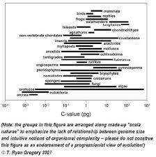 Gregory Size Chart Sandwalk Genome Size In Birds