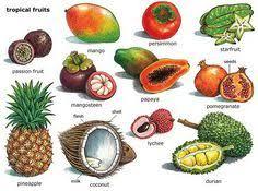 tropical fruit names. Unique Fruit Tropical Fruits Fun Fruit Fruit Art Fresh Exotic  Intended Names G