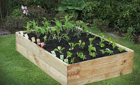Small Picture 44 off a Raised Garden Bed Kit incl Delivery GrabOne