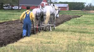 Image result for picture of plowing fields