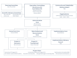 Organizational Structure Account