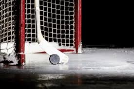 Image result for images of hockey puck & stick