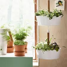 fun planter ideas that will brighten up your indoor kitchen garden