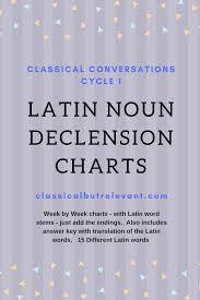 Latin Noun Declensions Classical But Relevant