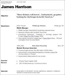 Cosmetology Resume Examples Fascinating Cosmetologist Resume Template Resume Ideas