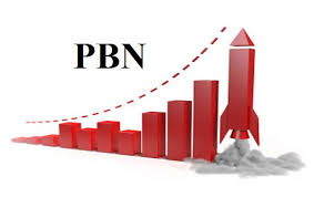 Image result for pbn services