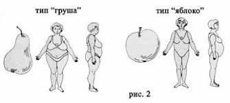Методическое пособие Под ожирением следует понимать хроническое  Тип яблоко чаще приводит к развитию осложнений в виде ожирения атеросклероза ишемической болезни сердца диабета и других заболеваний
