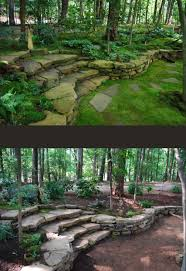 A fantastically thorough article about different types of moss and ...