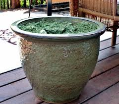 a few months ago the neighbor creator undressed and threw a large ceramic pot she knew that the large planters was beautiful and worth it if you saved