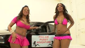 Pro Am Pussy Adventures 2 2010 Adult DVD Empire