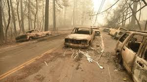 Image result for the camp fire