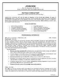 Download Two Page Resume Sample Haadyaooverbayresort Com 2