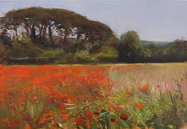 daily painting titled poppy field near mormoiron