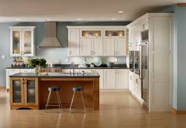 Best Cool Shenandoah Kitchen Cabinets 10 26839