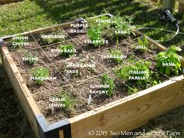 Small Picture How To Plant A Raised Bed Vegetable Garden Gardening Ideas