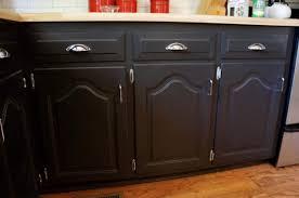 kitchen cabinet refacing vs painting fresh darker refinishing oak kitchen cabinets with steel handle door and