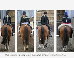 Rider Weight Study Charts Deleterious Effects Of