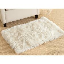 2 x 3 accent rugs best of safavieh arctic ivory 2 ft x 3 ft