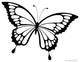 Printable Butterfly Outline Butterfly Outline Printable