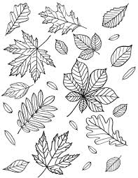 Free printable coloring pages for print and color, coloring page to print , free printable coloring book pages for kid, printable coloring worksheet. Fall And Thanksgiving Coloring Pages Free Printable Cakes To Kale