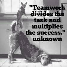 Teamwork Quotes Funny Amazing 48 Inspirational Teamwork Quotes And Sayings With Images Teamwork