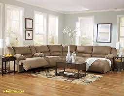 What Colour Sofa Goes With Light Wood Flooring 15 Best Light Hardwood Floor Living Room Ideas Unique