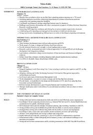 Big Data Resume Sample Big Data Consultant Resume Samples Velvet Jobs 1