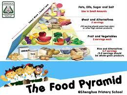 food pyramid essays and papers helpme food pyramid essays