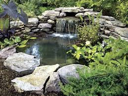 Small Picture 77 best Water garden images on Pinterest Water garden Water