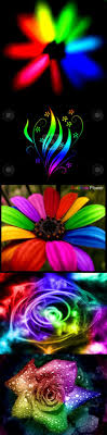 Rainbow flowers  Neon ColorsRainbow ...