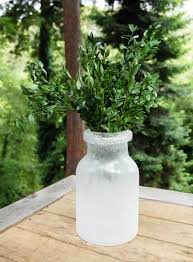 Preserving Tree Branches For Decoration Decorating Preserved Boxwood Bundle 5oz On White Bottle For Home