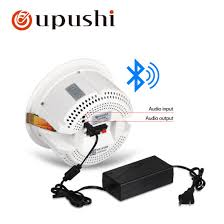 china wall speaker wall 10 watt 6 5