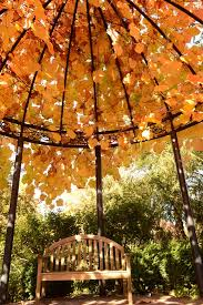 oregon garden resort 149 1 8 1 updated 2019 s reviews silverton tripadvisor