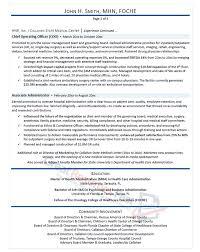 Executive Resume Samples Professional Resume Samples