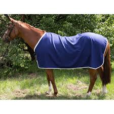 cotton drill horse rug